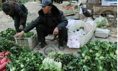 China's ability to feed its people questioned by UN expert | A2 Development and Globalisation | Scoop.it