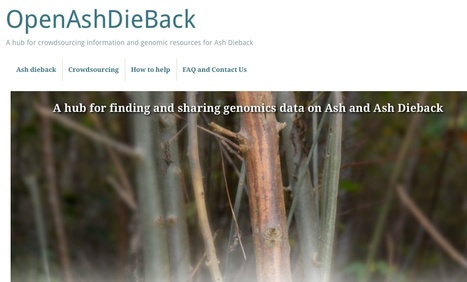 OpenAshDieBack: A hub for crowdsourcing information and genomic resources for Ash Dieback | Plant-Microbe Interaction | Scoop.it