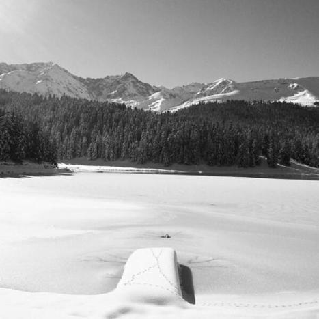 Lac de Payolle le 20 janvier 2014 - Twitter / tourismemidipy: La photo #Instagram de la semaine ... | Vallée d'Aure - Pyrénées | Scoop.it
