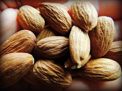 That's Nuts! A Complete Guide to Soaking Nuts and Seeds   Health and Nutrition   Scoop.it