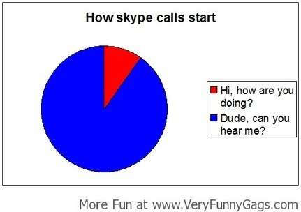 Every Damn Skype Call!   Funnygags   Scoop.it