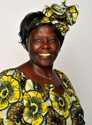 Abstract | Wangari Maathai 2.0 | Scoop.it