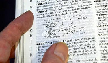 Bibilomancia: divertida manera de practicar las formas del futuro : Formación ELE | Merchele | Scoop.it