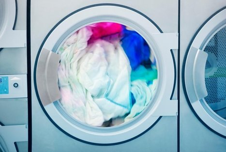 Doing Laundry Can Be Deadly for Clams, Mollusks and Other Marine Animals | All about water, the oceans, environmental issues | Scoop.it