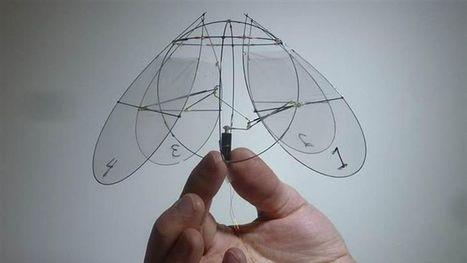 Un robot inspiré d'une méduse «nage» dans l'air | ressources humaines;business;reseaux sociaux | Scoop.it