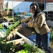 Oko Farms in Bushwick, Brooklyn: Little (Fish) Farm in the Big City | Vertical Farm - Food Factory | Scoop.it