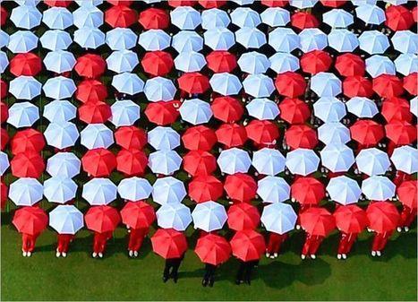 2000 parapluies pour un code   QRdressCode   Scoop.it