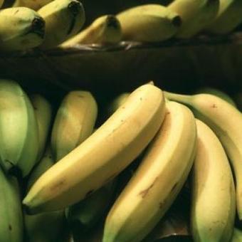 66 kilos de cocaïne retrouvés dans des bananes chez Colruyt | Jù'scoop iT | Scoop.it