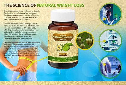 Native Garcinia Cambogia Extract Review – Fulfill Your Weight Loss Dream!     Native Garcinia Cambogia   Scoop.it