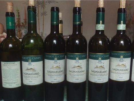 It's time to recognize what the versatile Verdicchio wines offer | Wines and People | Scoop.it