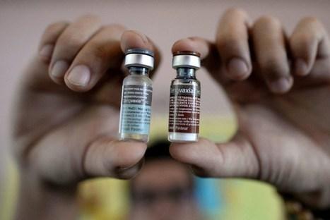 ¿La vacuna frente al dengue estará causando un aumento de los casos graves de la enfermedad? | Por: @linternista | Salud Publica | Scoop.it