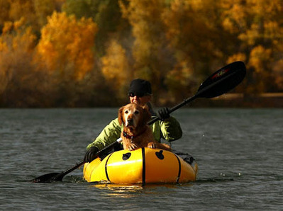 How to Kayak With Your Dog | All about water, the oceans, environmental issues | Scoop.it