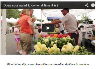 Does Your Salad Know What Time It Is? | Mom Psych | Scoop.it