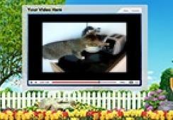 FUNNY CAT VIDEOS PART 4 | funny videos | Scoop.it