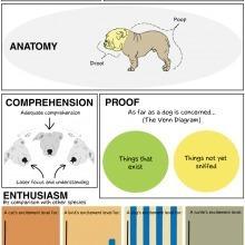 Hur tänker en hund? | Bastis Psykologi | Scoop.it