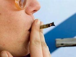 Marihuana sprawia, że ból staje się znośny | NARKOTYKI | Scoop.it