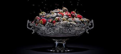 Visualizing Waste: Klaus Pichler's Gorgeous, Rotting Food | zero food waste | Scoop.it