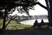 Living near trees, green spaces reduces stress, study shows | forestry | Scoop.it