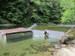 Oregon Fish and Wildlife struggles to preserve Sandy River's wild salmon and ... - OregonLive.com | Fish Habitat | Scoop.it