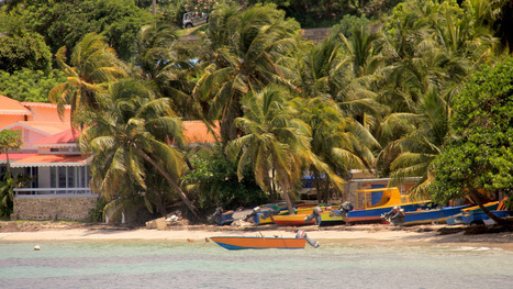 Bequia – one of my favourite places in the world | Martin Hesp ... | Bequia - All the Best! | Scoop.it