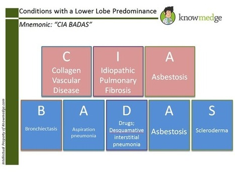 Twitter / knowmedge: Conditions with a Lower Lobe ... | Internal Medicine ABIM exam | Scoop.it