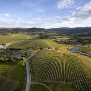 Aussie wine trends: 1. Slimline Chardonnay | Autour du vin | Scoop.it