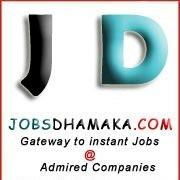 jobsdhamaka - Grunted job provider   Jobs Dhamaka   Scoop.it