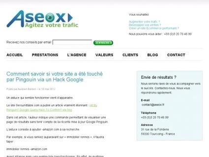 Comment savoir si votre site a été touché par Pingouin via un Hack Google | Websourcing.fr | Time to Learn | Scoop.it