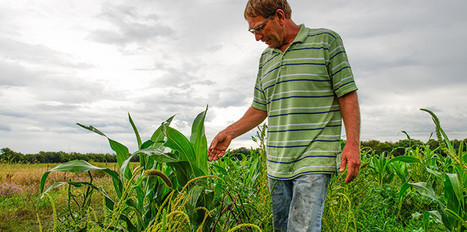 This Kansas farmer fought a government program to keep his farm sustainable | Sustain Our Earth | Scoop.it
