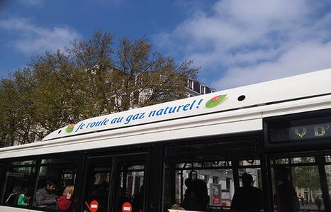A Lille, des solutions pour lutter contre le gaspillage alimentaire | Des 4 coins du monde | Scoop.it