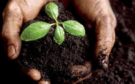 du compost en ville / le mouv' | agriculture, alimentation et autres fables | Scoop.it