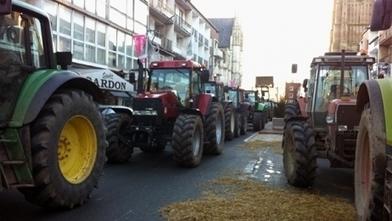France Bleu | Manifestation des agriculteurs à Périgueux : ce qu'il faut savoir | Agriculture en Dordogne | Scoop.it