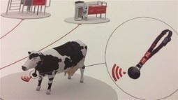 La vache « wi-fi » et autres innovations en agriculture | Smart agriculture & ruralité : | Scoop.it