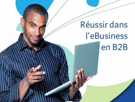 Guide et Conseils pour Réussir son Site EBusiness en B2B | Managing options | Scoop.it