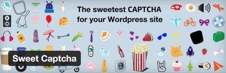 5 plugins pour installer un système de captcha sur votre blog | Les outils du Web 2.0 | Scoop.it