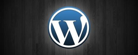 WordPress Siteleri Hızlandırmak | Seo Tures Backlink ve Seo Paketleri | Scoop.it