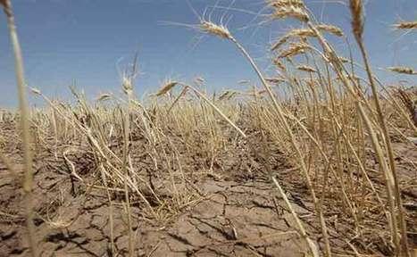 Le Maroc est parmi les pays qui seront confrontés à la rareté de l'eau à l'horizon 2020 - Maghreb Emergent | Terre et Eau en région Méditerranéenne | Scoop.it