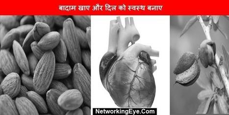 बादाम खाए और दिल को स्वस्थ बनाए | MLM News Updates | Scoop.it
