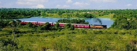 My First Experience of India Luxury Train Travels | India luxury train | Scoop.it