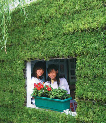 On higher ground - China Daily | Vertical Farm - Food Factory | Scoop.it