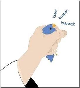 LYon-Actualités.fr: Twitter et la censure des comptes parodiques du candidat Sarkozy | LYFtv - Lyon | Scoop.it