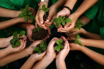 "Five Ways to Develop ""Ecoliteracy"" 