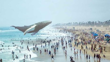 The story of how Magic Leap Is Secretly Creating a New Alternate Reality (with it's ~half billion $542M dollars of funding) | 4D Pipeline - trends & breaking news in Visualization, Virtual Reality, Augmented Reality, 3D, Mobile, and CAD. | Scoop.it