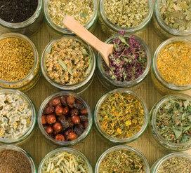 Top 10 Herbal remedies for asthma - Planet Ayurveda | Healthcare News | Scoop.it
