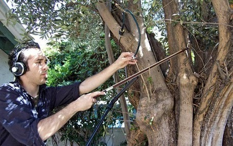 Music From a Tree: Diego Stocco Creates Musical Jams With Nature | DESARTSONNANTS - CRÉATION SONORE ET ENVIRONNEMENT - ENVIRONMENTAL SOUND ART - PAYSAGES ET ECOLOGIE SONORE | Scoop.it