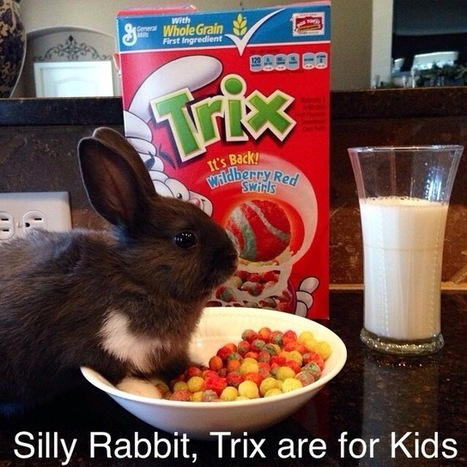 Silly Rabbit, Tricks are for Kids | Humor and Just Good Fun | Scoop.it