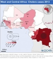 West and Central Africa: Cholera cases 2013 (as of 1 November 2013) | ReliefWeb | Gestion des crises | Scoop.it