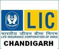 insurance in chandigarh contact me at 9779088711 - insurance in chandigarh contact me at 9779088711   insurance in chandigarh   Scoop.it