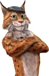 Le Lynx : le comparateur d'assurances qui permet de faire des économies | Rachat de crédit | Scoop.it