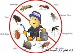 شركة مكافحة حشرات بمكة - 0534838744 - ثراء الخليج | شركة ثراء الخليج | Scoop.it